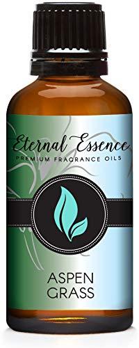 Aspen Grass - Premium Grade Fragrance Oils - 30ml - Scented Oil