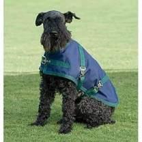 Dover Saddlery Rider's International Dog Turnout Sheet- Large, Navy with Hunter Trim