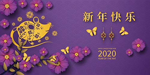 Baocicco 12x8ft Happy Chinese New Year Backdrop Chinese Style 2020 New Year Party Year of The Rat Beautiful Blossoms Photography Background Lunar Calender Spring Festival Banner Photo Video Prop