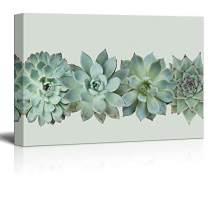 "wall26 - Closeup of Succulent Plants Gallery - Canvas Art Wall Decor - 32""x48"""