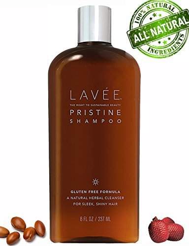Lavée Pristine Organic Moisturizing | Nourishing Shampoo (8 oz) - Features Argan oil and Buriti oil - Extremely gentle - Gluten Free, Sulfate Free, Paraben Free and Vegan