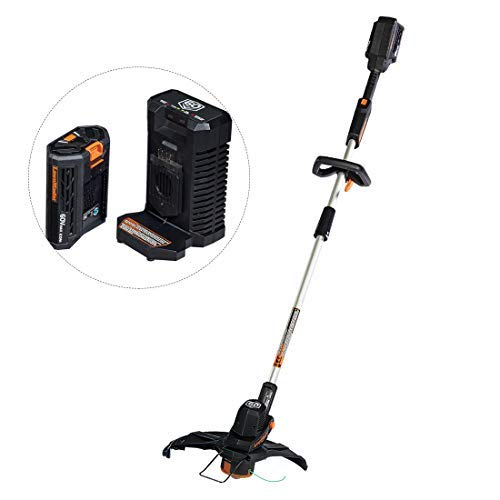 LawnMaster String Trimmer 60V MAX Lithium-Ion Cordless with 2.0Ah Battery &Charger Ideal for Garden Trimming and Edging with Large 14inch Cutting Diameter