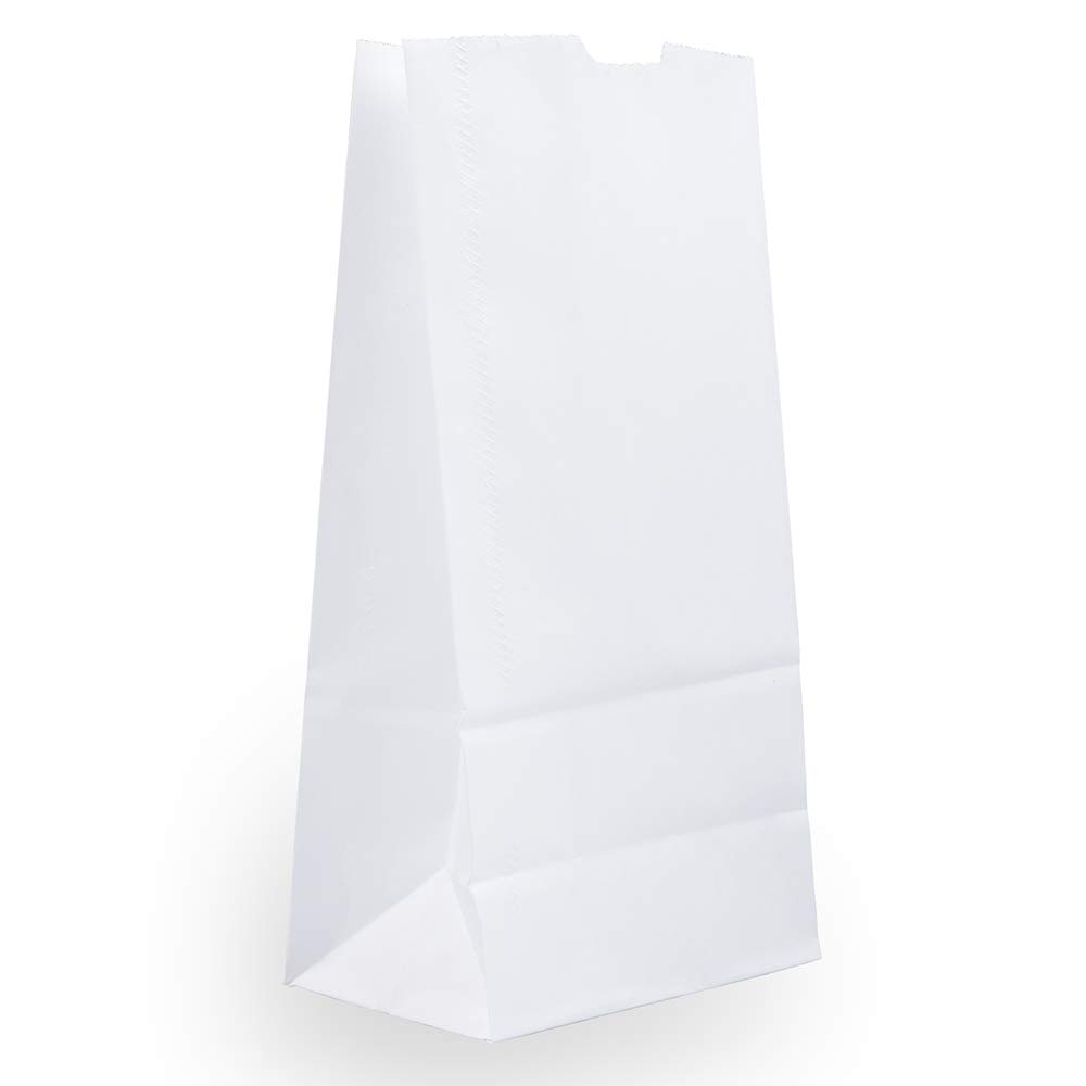 JAM PAPER 100% Recycled Snack/Lunch Bags - Medium (5 x 9 3/4 x 3) - White Kraft Grocery Bags - 25/Pack