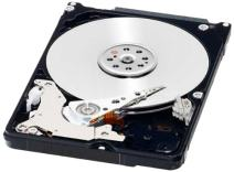 WD Black 160GB Performance Mobile Hard Disk Drive - 7200 RPM SATA 6 Gb/s 16MB Cache 9.5 MM 2.5 Inch - WD1600BEKX