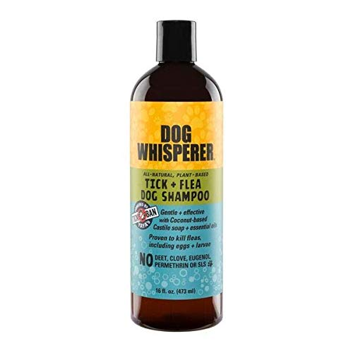 DOG WHISPERER Tick + Flea Dog Shampoo, Proven Effective, All-Natural, Gentle with Coconut-Based Castile Soap and Essential Oils (16 ounces)