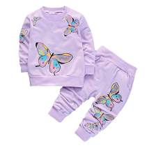 BABICOLOR Baby Girls Clothes Toddler Clothing Cute Baby Spring Fall Infant Outfits Tops+Pants 2pcs(Purple,24M)