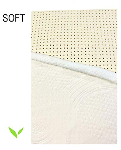 """College Dorm Organic Latex Mattress Topper, Twin XL Size, 2"""" Inch, Soft Firmness [GOLS Certified] with Strong Premium Organic Cotton Cover Protector"""