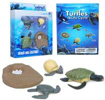 Gemini&Genius Insect Growth Diary Simulation Frog Life Cycle Set Mosquito, Sea Turtle Model and Ant Action & Toy Figures Learning & Educational Children's Toys (Sea Turtle)