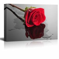 """wall26 - Canvas Wall Art - Closeup of Fresh Red Rose Flower with Waterdrops - Giclee Print Stretched Gallery Wrap 
