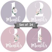 Adorable 4 in Floral Baby Monthly Milestone Stickers. Set of 24 Infant Girl Decals. Pink, Purple and Gray Picture Props for Female Babies. Cute First Year Family Scrapbook and Newborn Album Photo Aids