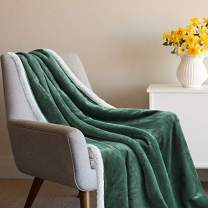 Tempcore Sherpa Throw Blanket for Couch, Fuzzy Soft Blanket Twin Size Green Sherpa Blanket Microfiber