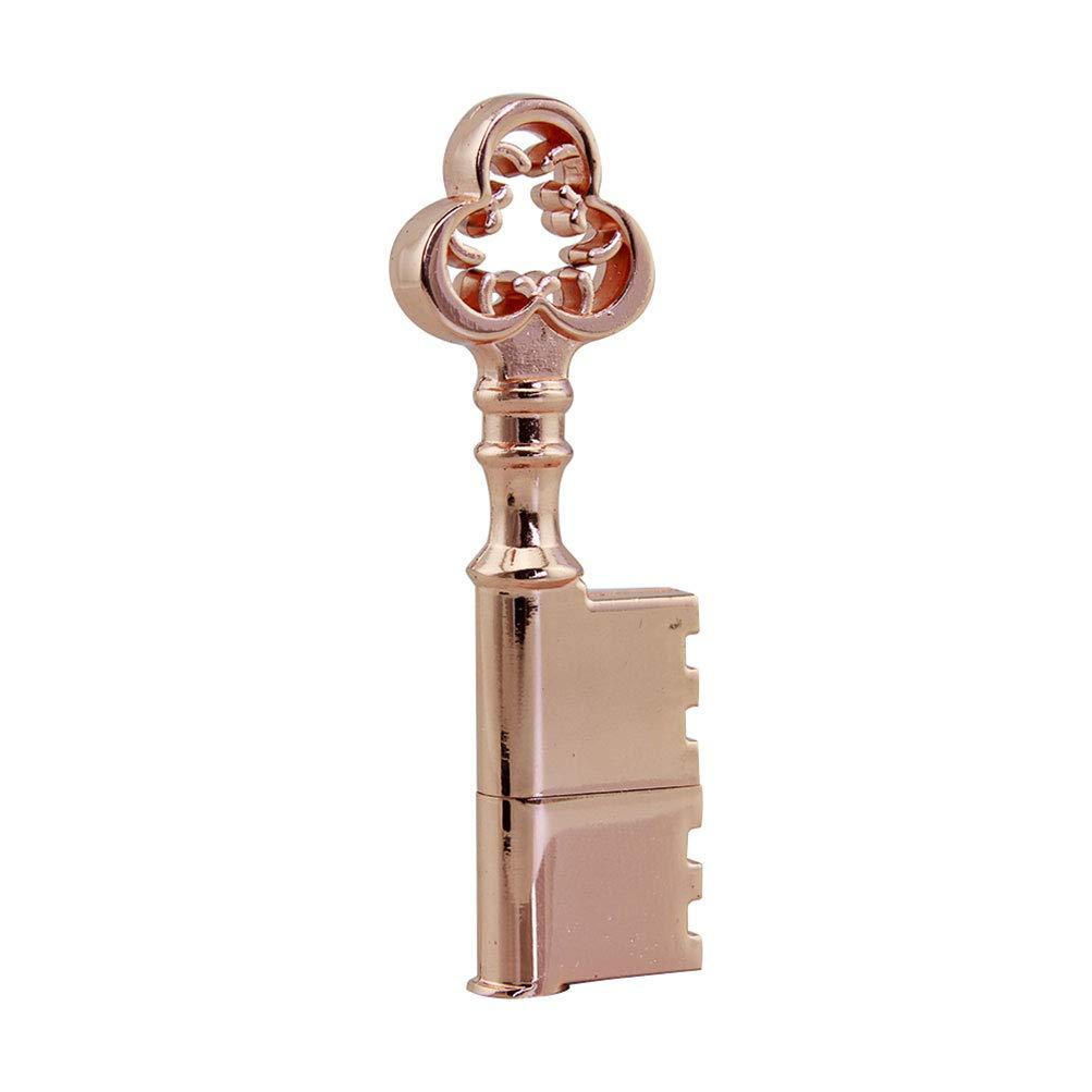 CHUYI 20PCS 8GB USB 2.0 Flash Drive Waterproof Metal Rose Gold Key Shape Pen Drive Memory Stick USB Stick Data Storage USB Drive Thumb Drive Cool Jump Drive U Disk Xmas Gift