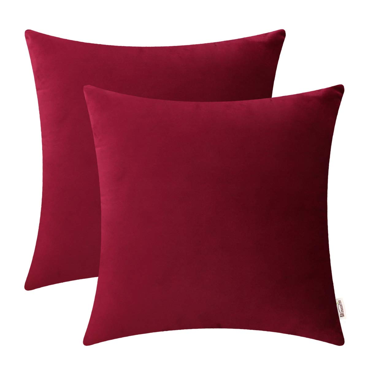 BRAWARM Pack of 2 Cozy Throw Pillow Covers Cases for Couch Sofa Home Decoration Solid Dyed Soft Velvet Both Sides 22 X 22 Inches Burgundy