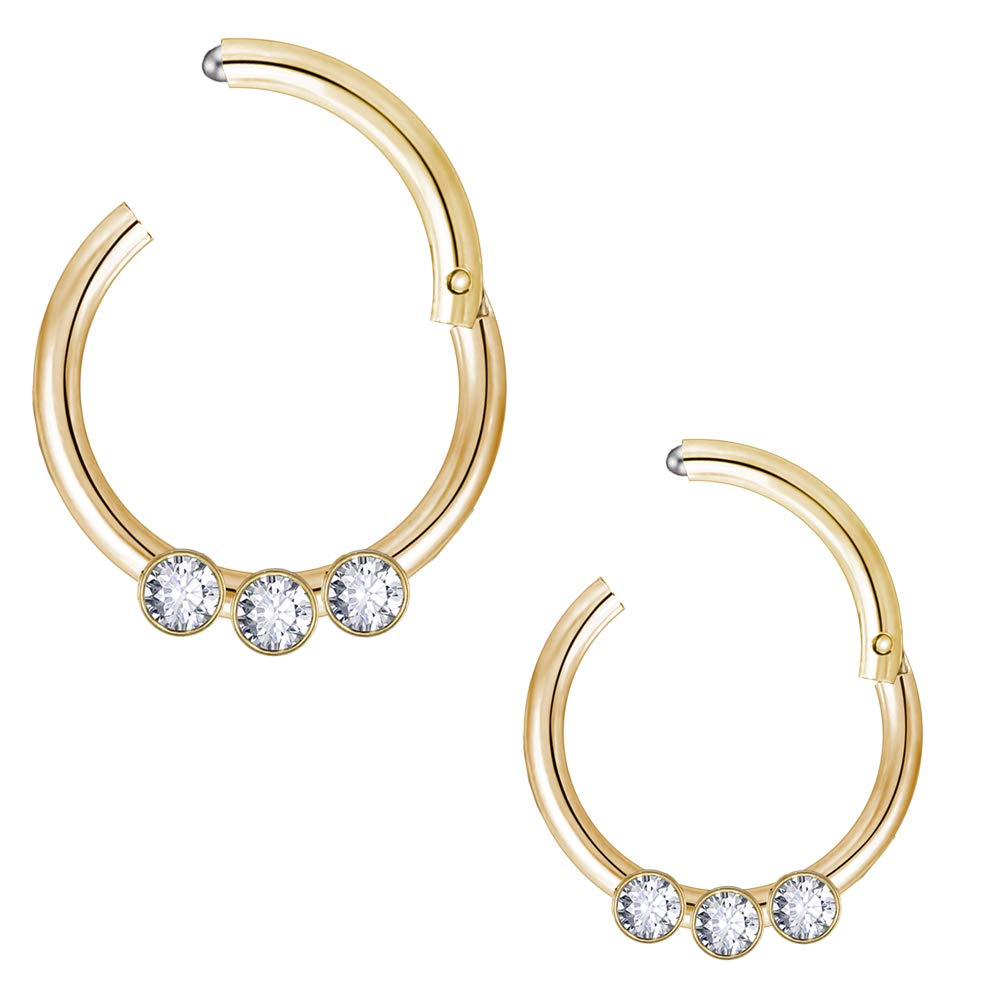 ZS 2PCS Stainless Steel Cartilage Earrings 16G Nose Rings Hoop Rose-Gold Septum Clicker Ring Helix Earrings Body Piercing Jewelry