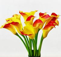 """Floral Kingdom 25"""" Large Handmade Real Touch PU Latex Calla Lilly Artificial Spring Flowers for Floral Arrangements, Bouquets, Home/Office Decor (6 Pack) (Yellow-Red)"""