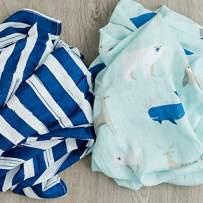 2-Pack Swaddle Blanket Ultra Soft Luxury Decorative Muslin Swaddle Blankets (Arctic World)