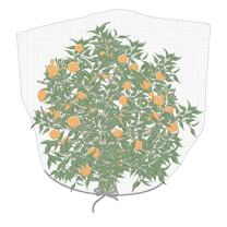 """Agfabric Bird Netting Insect Barrier Garden Plant Cover 72"""" H x 72"""" W in-Shape Bag with Rope, White"""