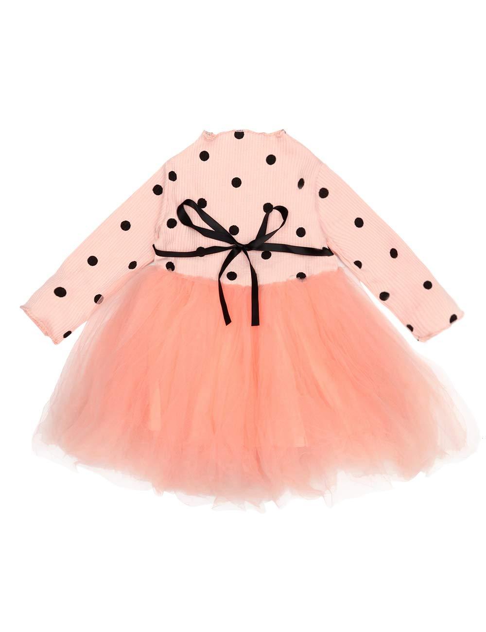 Toddler Infant Baby Girls Clothes Long Sleeve Polka Dot Tutu Tulle Princess Dress One-Piece Skirt Set