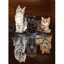 HuaCan Diamond Painting Kits - DIY 5D Cat Tiger Full Square Drill Crystal Rhinestone Embroidery Pictures Arts Craft for Home Wall Decor 30x40cm
