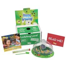 Insect Lore Deluxe Ladybug Land with Live Larvae