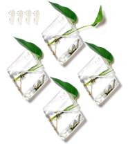 GEOLUX Diamond Terrariums Hanging Wall Planters, Clear Glass (7 x 5 inches), Pack of 4
