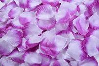 Magik 1000~5000 Pcs Silk Flower Rose Petals Wedding Party Pasty Table Decorations, Various Choices (3000, Purple & White)