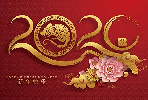 Baocicco 12x8ft Happy Chinese New Year Backdrop Year of The Mouse Chinese Characters Mouse Image 2020 Chinese Peony Photography Background Chinese New Year Party Welcome to 2020 Party Photo Booth