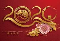 Baocicco 10x7ft Happy Chinese New Year Backdrop Year of The Mouse Chinese Characters Mouse Image 2020 Chinese Peony Photography Background Chinese New Year Party Welcome to 2020 Party Photo Booth