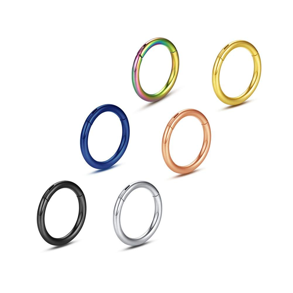 WBRWP 316L Stainless-Steel Piercing-Ring Hinged Nose-Rings-Hoop : 20G 18G 16G 14G Womens and Mens Body Pierecing Ring Segment Clicker Lip Rings Helix Cartilage Rook Earrings Diameter 6mm 8mm 10mm 12mm