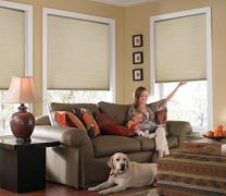 Windowsandgarden Custom Cordless Single Cell Shades, 58W x 52H, Ivory Beige, Any Size 21-72 Wide and 24-72 High
