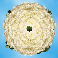 GlobalRose 250 Fresh Cut White Roses - Long Stem Roses - Fresh Flowers Wholesale Express Delivery