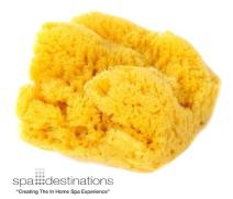 "Spa Destinations Natural Silk Make Up Sponge (3 pk 1.5"" to 2"")"