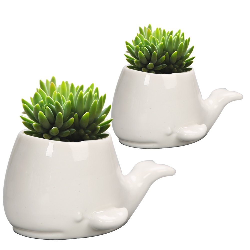 GeLive Set of 2 Whale White Ceramic Succulent Planter Flower Pot Window Box Decorative Container (Set of 2 Whale)