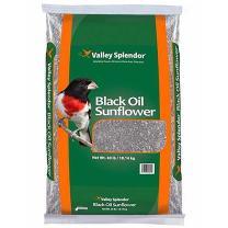 Valley Splendor Black Oil Sunflower Seeds, 40 lbs