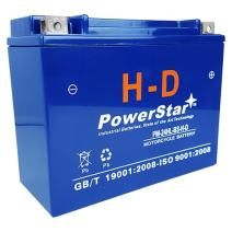 PowerStar HD YTX24HL-BS Motorcycle Battery for HONDA GL1100 Gold Wing 1100CC