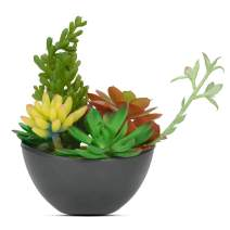 Luxsego Artificial Succulent Plants with Pot - 8 Inch Realistic Succulent Arrangements, Fake Potted Succulent Plants for House Decorations, Bathroom, Wedding, Garden, Office, Indoor and Outdoor