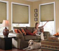 Windowsandgarden Custom Cordless Single Cell Shades, 53W x 64H, Amber, Any Size 21-72 Wide and 24-72 High