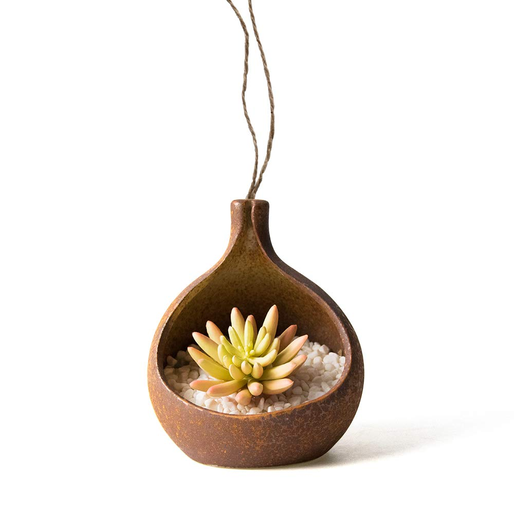 7 Inch Barnacle Succulent Planter Pot with Large Opening,Ceramic Antique Flower Pot - Indoor Outdoor Planter - Succulent Cactus Pot