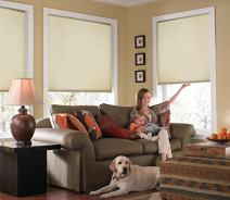 Windowsandgarden Custom Cordless Single Cell Shades, 24W x 36H, Daylight, Light Filtering 21-72 Inches Wide