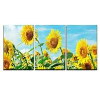 "wall26 - 3 Piece Canvas Wall Art - Sunflower Field Under Sunny Sky - Modern Home Decor Stretched and Framed Ready to Hang - 16""x24""x3 Panels"