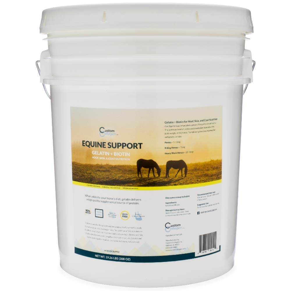 Custom Collagen Equine Support - 20 lb Pail - Joint Care for Horses - Grain Free, Hydrolyzed Gelatin Powder, Scoop Included