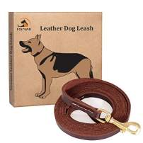 Fairwin Leather Dog Leash 6 Foot (5.6 Foot) - Leather Slip Collar Dog Leash - Genuine Handmade 6 ft Leather Leashes for Medium or Small Dog Training and Walking No Slip Leash