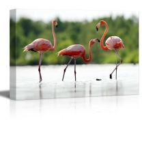 """Canvas Prints Wall Art - The Pink Caribbean Flamingo on Water 