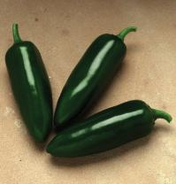 David's Garden Seeds Pepper Jalapeno Jalafuego 3807 (Red) 25 Non-GMO, Hybrid Seeds