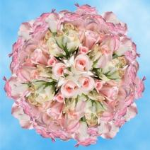 GlobalRose 200 Fresh Cut Pastel Roses - Light Orlando Roses - Fresh Flowers Wholesale Express Delivery