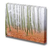 """Canvas Prints Wall Art - Landscape of a Forest with Fog with Yellow Leaves - 24"""" x 36"""""""