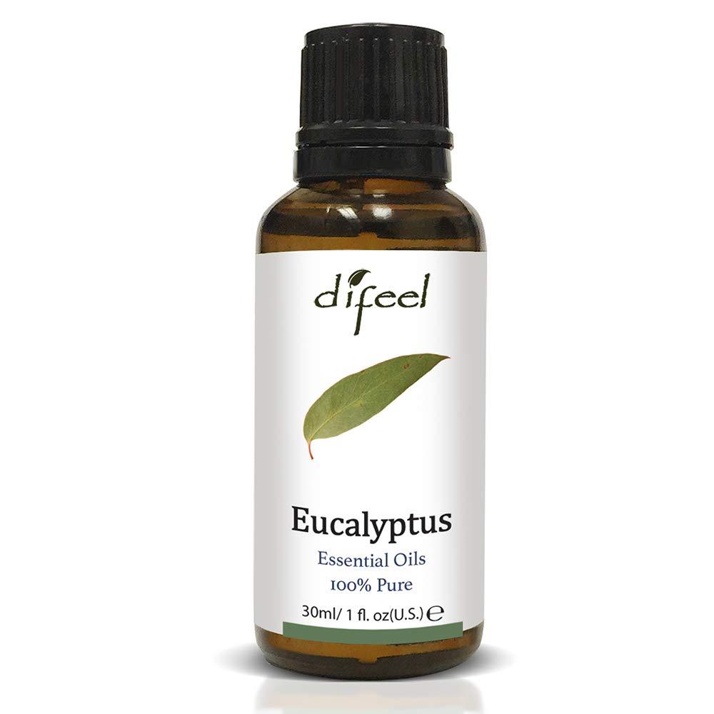 Sunflower Difeel 100% Pure Essential Oils, Eucalyptus, 1 Fluid Ounce