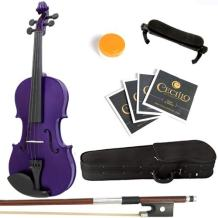 Mendini Solid Wood Violin with Hard Case, Bow, Rosin and Extra Strings (4/4, Purple)