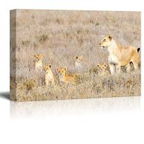 "wall26 - Wild Animals Canvas Prints Series - Lions | Stretched and Ready to Hang - 16""x24"""