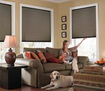 Windowsandgarden Custom Cordless Single Cell Shades, 71W x 47H, Espresso, Any Size 21-72 Wide and 24-72 High